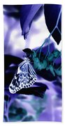 Purple Teal And A White Butterfly Beach Towel