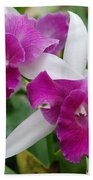 Purple White Orchids Beach Towel