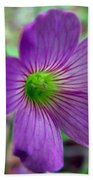 Purple Wildflowers Macro 1 Beach Towel