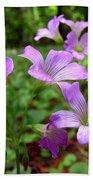 Purple Wildflowers Macro 2 Beach Towel
