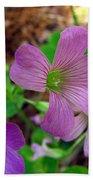 Purple Wildflowers Macro 3 Beach Towel