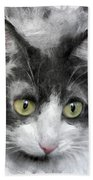 A Cat With Green Eyes Beach Towel