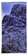 Pusch Ridge Snowfall Beach Towel
