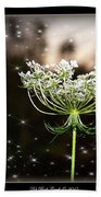 Queen Annes Lace And Sparkles At Dusk Beach Sheet