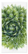 Queen Victoria Agave Succulent Beach Sheet