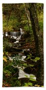 Quiet Autumn Stream Beach Towel