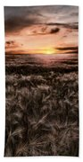 Quiet Estivation Beach Towel