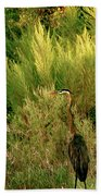 Quiet Solitude Beach Towel