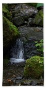 Quinault Washington Rain Forest Beach Towel