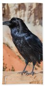Quoth The Raven Beach Towel