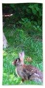 Bunny Love Beach Towel