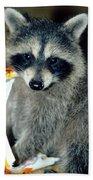 Raccoon1 Snack Bandit Beach Sheet