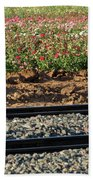 Rails And Roses Beach Towel