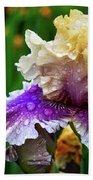 Rain Coated Multi Colored Iris Beach Towel