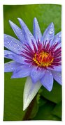 Rain Drenched Blue Lotus In Grand Cayman Beach Towel