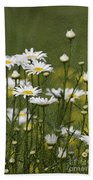 Rain Drops On Daisies Beach Towel