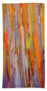 Rainbow Eucalytpus Beach Towel