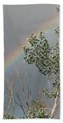 Rainbow In The Trees Beach Towel