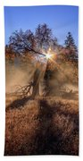Rainbow In Yosemite Valley Ice Fog Beach Towel