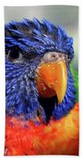 Rainbow Lorikeet Beach Towel