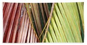 Rainbow Of Palms Gp Beach Towel
