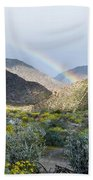 Rainbow Palm Beach Towel