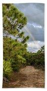 Rainbow Path Beach Towel