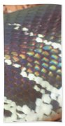 Rainbow Scales Beach Towel