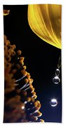 Raindrops From Sunflower Petal Beach Towel