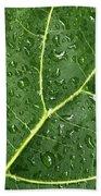 Raindrops On Fiddle Leaf Beach Towel