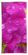 Raindrops On Pink Flowers Beach Towel by Carol Groenen