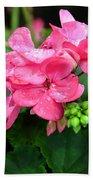 Raindrops On Pink Geranium Beach Towel