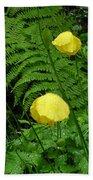 Raindrops On Yellow And Green Beach Towel