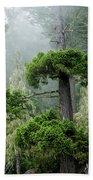 Rainforest Beach Towel