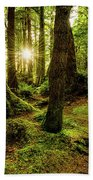 Rainforest Path Beach Towel