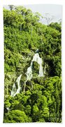 Rainforest Rapids Beach Towel