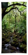 Rainforest Stream Beach Towel
