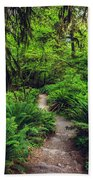 Rainforest Trail Beach Towel