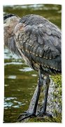 Rainy Day Heron Beach Towel by Belinda Greb