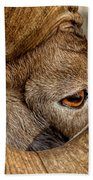 Ram Detail Beach Towel