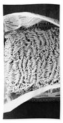 Ramen- Black And White Photography By Linda Woods Beach Towel