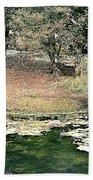 Ranthambore Beach Towel
