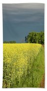 Rapeseed Field With Storm Clouds In Background Beach Towel