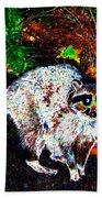 Rascally Raccoon Beach Towel by Will Borden
