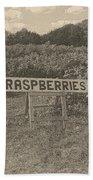 Raspberry Fields  Beach Towel