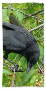 Raven In The Cherry Tree Beach Towel