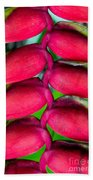 Parrot's Beak Heliconia Beach Towel