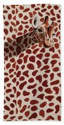 Real Spots 2016 Beach Towel