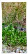Really Dangerous Alligator Beach Towel