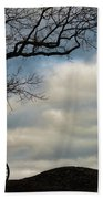 Reap The Wind Beach Towel